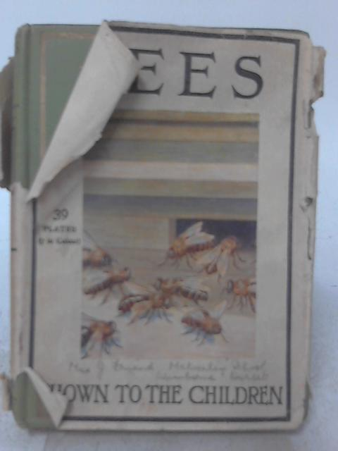 Bees By Ellison Hawks