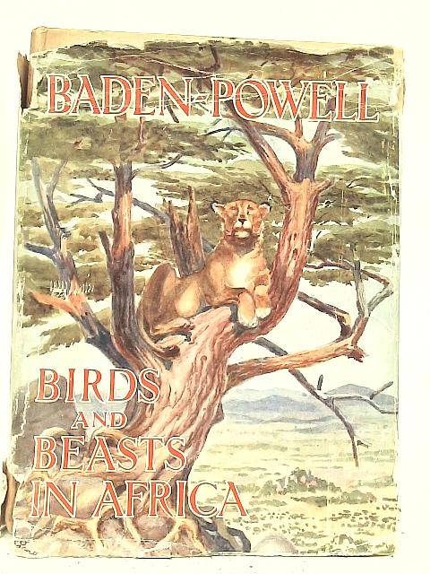 Birds and Beasts in Africa By Lord Baden-Powell