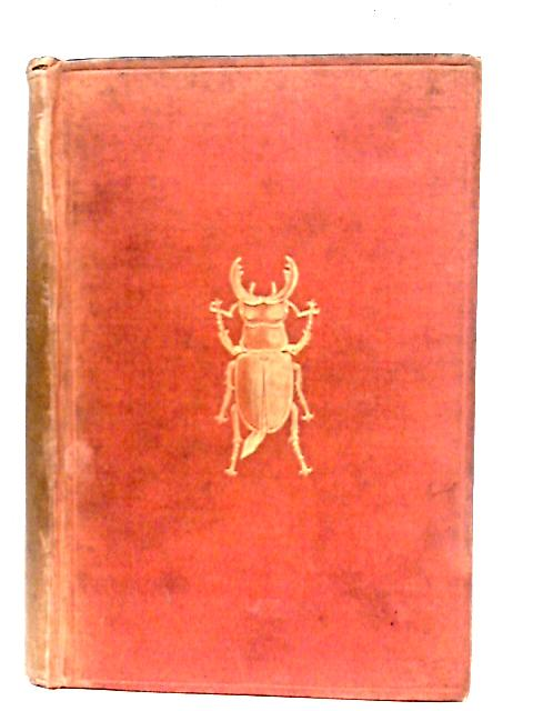 The Out-Door World or A Young Collector's Handbook By W. Furneaux
