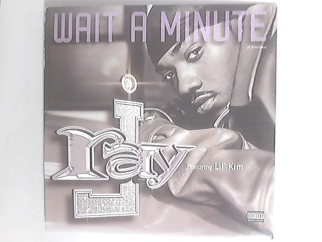 Wait A Minute by Ray J