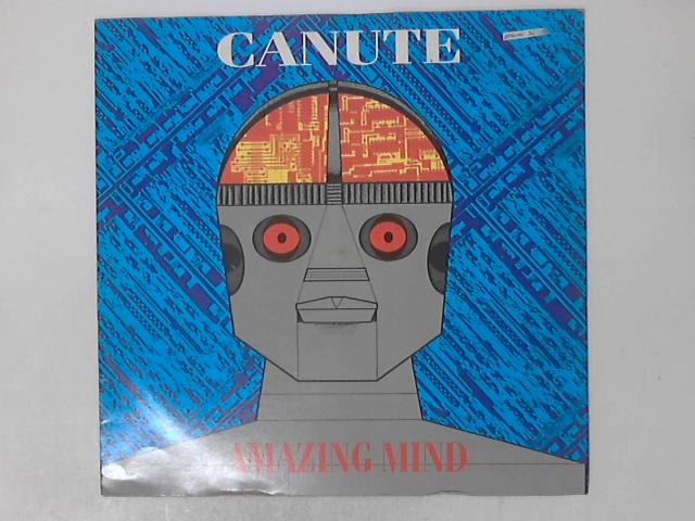 Amazing Mind by Canute