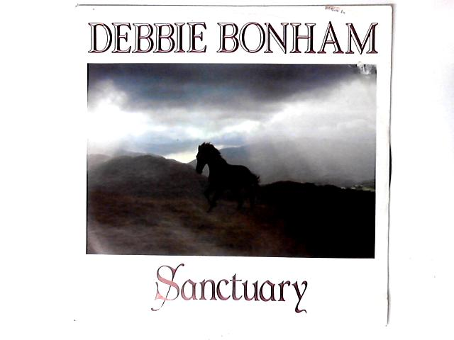 Sanctuary / Fly Away 12in By Debbie Bonham