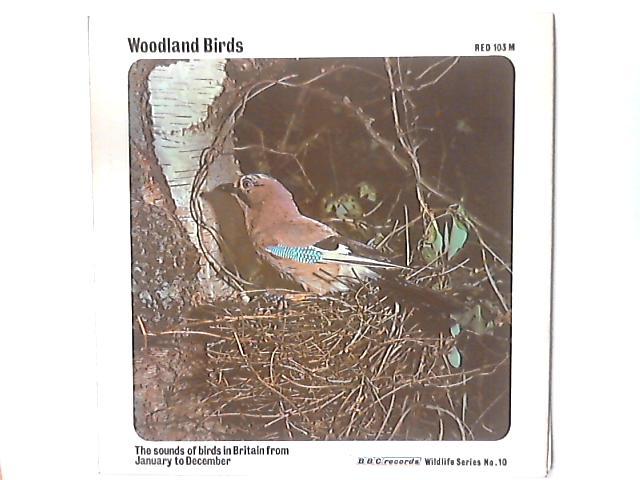 Woodland Birds By No Artist