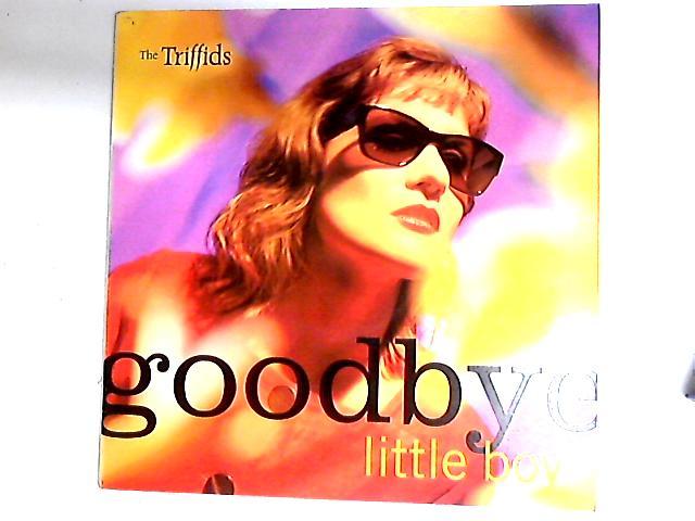Goodbye Little Boy 12in by The Triffids