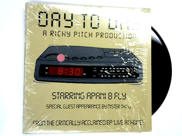 Day To Day 12in by Richy Pitch