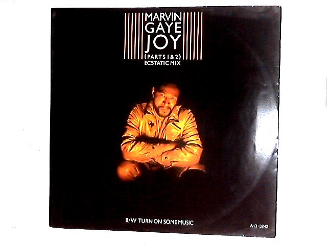 Joy (Parts 1 & 2) (Ecstatic Mix) / Turn On Some Music 12in by Marvin Gaye