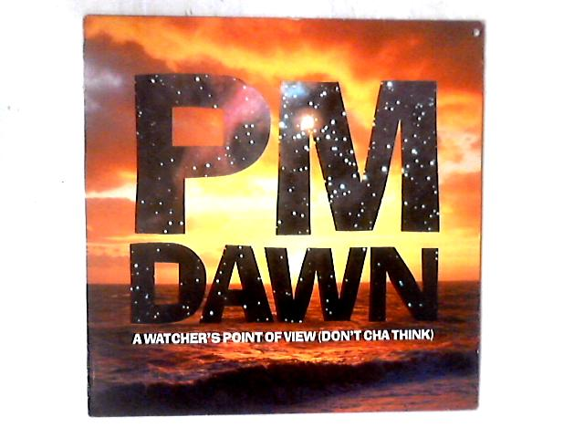 A Watcher's Point Of View (Don't Cha Think) 12in By P.M. Dawn