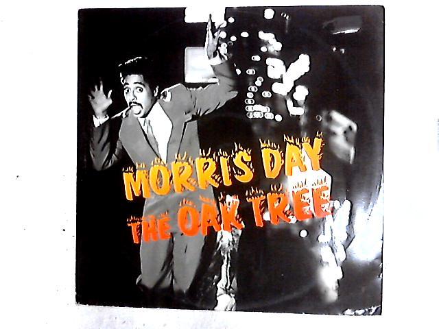 The Oak Tree 12in By Morris Day