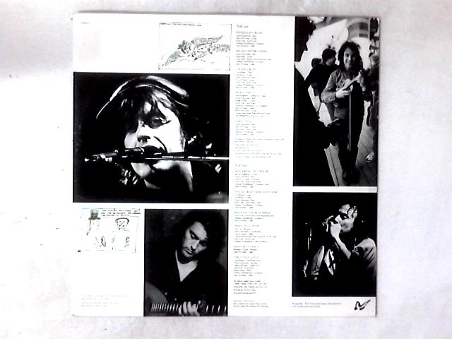 Fisherman's Blues LP NO OUTER SLEEVE by The Waterboys