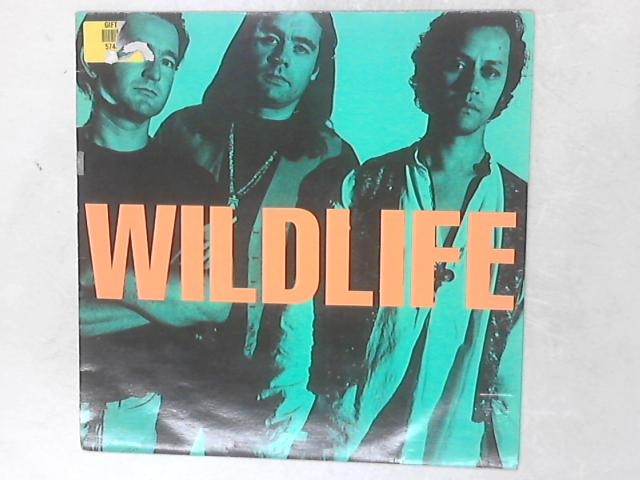 Wildlife lp By Wildlife