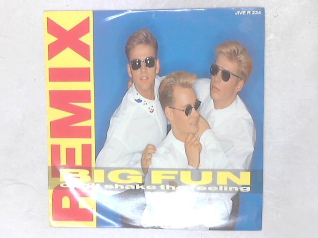 Can't Shake The Feeling (Remix) 12in Single By Big Fun