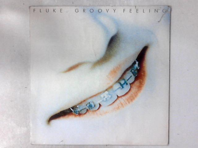 Groovy Feeling 12in By Fluke