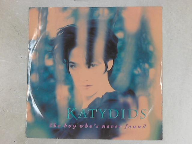 The Boy Who's Never Found 12in Single By Katydids