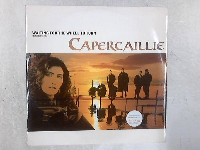 Waiting For The Wheel To Turn (Extended Remix) 12in Single By Capercaillie