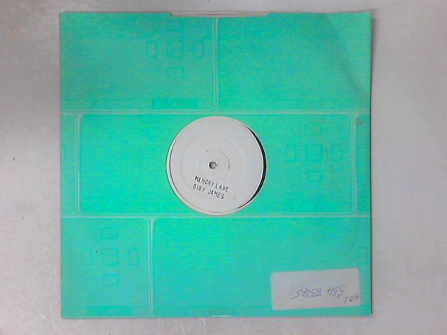 Memory Lane / Let Them Talk 12in WHITE LABEL TEST PRESS By Biby James