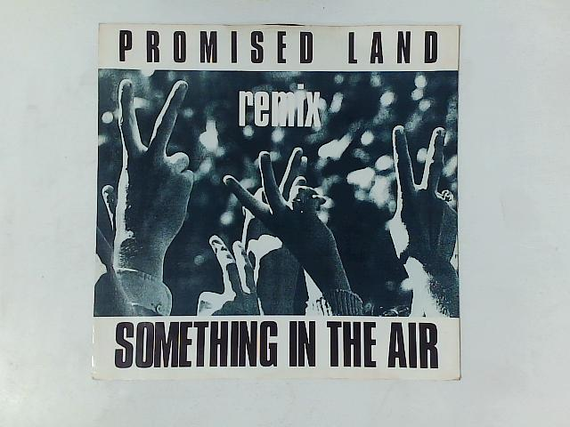 Something In The Air (Remix) 12in By Promised Land