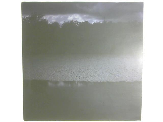 Goodbye LP By Colder