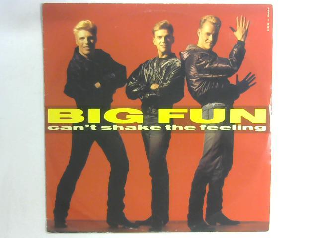 Can't Shake The Feeling 12in By Big Fun